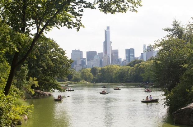 Row boats in the Lake, Central Park on Tuesday August 20, 2013. ©Freja Dam